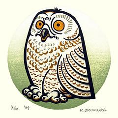Snowy owl (Japanese Flower and Bird Art) Tags: bird snowy owl bubo scandiacus strigidae kojun okumura modern woodblock print japan japanese art readercollection