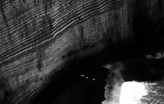 "fine art, 3 white seagulls fly in the deep shadows of the cliffs of the alabaster coast - Étretat, Seine-Maritime, Haute-Normandie, Normandy, France (grumpybaldprof) Tags: étretat seinemaritime hautenormandie normandy france arches ""portedaval"" ""portedamont"" ""portedemanneporte"" laiguille ""theneedle"" ""eugèneboudin"" ""gustavecourbet"" ""claudemonet"" ""paysdecaux"" ""alabastercoast"" ""chapellenotredamedelagarde"" ""thewhitebird"" ""loiseaublanc"" ""lachapellenotredamedelagarde"" ""falaised'amont"" ""thegardensofetretat"" ""lesjardinsd'etretat"" alabaster white cliffs needles bw blackwhite ""blackwhite"" ""blackandwhite"" noireetblanc monochrome ""fineart"" ethereal striking artistic interpretation impressionist stylistic style contrast shadow bright dark black illuminated seagulls brightwater waves sea canon 70d ""canon70d"" tamron 16300 16300mm ""tamron16300mmf3563diiivcpzdb016"""