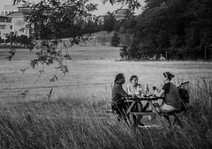 The picnic (2 of 4) (+Pattycake+) Tags: eastanglia 43 people norwich moon lake evening alfresco noutdoor summer lumixdmcgm1 bw candid monochrome mirrorless street broad norfolk picnic uea uk fisherman food eating leisure