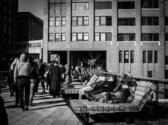 High Line Park, Chelsea, Manhattan (bobbex) Tags: usa bigapple manhattan ny nyc bw blackandwhite mono highline