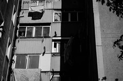 Old woman watching (AntoinePound) Tags: buidling skycrapper tower house people neighborhood oldwoman wash clothes