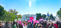 2018.10.22 We Won't Be Erased - Rally for Trans Rights, Washington, DC USA 06823