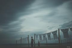 Wind 愛媛 伊予市 双海シーサイド公園   9 17 2018 (tsake123) Tags: sony alpha a7 alpha7 sky sea sel2470z landscape c1 captureone cloud coast beach japan sonyflickraward