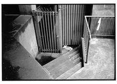 gate (jollyville) Tags: blackandwhite 35mm leica leicam2 voigtlander colorskopar35mmf25 35mmf25 fp4 ilfordfp4 rodinal seattle
