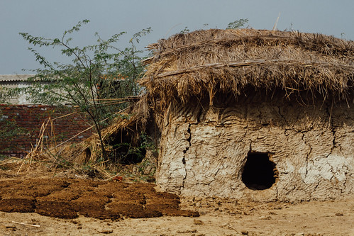 Cow Dung Storage Shack, Uttar Pradesh India