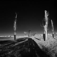 landscape with phantoms (old&timer) Tags: background infrared composite surreal song4u oldtimer imagery digitalart laszlolocsei