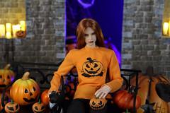 More, more pumpkins! (Rashmiel) Tags: volks ooak kmiro rashmiel