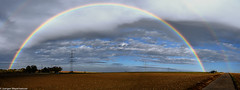 Der Regenbogen / The Rainbow (J.Weyerhäuser) Tags: mainz baum nikon z7 regenbogen panorama wolken himmel sky clouds rainbow