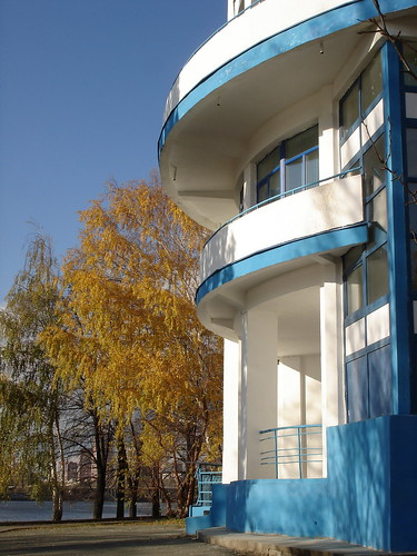 Динамо и берёза ©  ayampolsky
