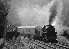 smoky (midcheshireman) Tags: steam staffordshire train locomotive churnetvalley railway consall