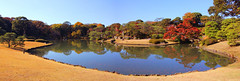 Rikugien Garden (arbivi) Tags: autumn fall foliage koyo momiji japanese maple tree red green orange yellow rikugien garden komagome tokyo japan canon 60d tamron arbivi raymondviloria