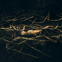 cast free (brookeshaden) Tags: brookeshaden fineartphotography fineart conceptualphotography surrealism selfportrait selfportraiture roots tangled vines thorns trapped underground darkness