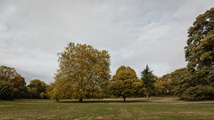 Arnos Park, North London (PhredKH) Tags: 2470mm arnospark canoneos5dmkiii canonphotography ef2470mmf4lisusm fredkh grass greenlondon london northlondon parkland photosbyphredkh phredkh splendid trees urbanlondon urbanpark clouds sky tree park field