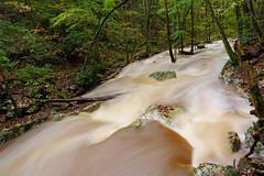 Little Stony Creek: Raging (Shahid Durrani) Tags: little stony creek cascades pembroke virginia hurricane michael