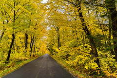 Orleans Island, Quebec, Canada (Agirard) Tags: road leaves autumn fall trees mapletrees mitan sony a7ii batis batis18 218mm 18mm landscape wide angle