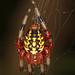 Marbled Orbweaver - Araneus marmoreus, Julie Metz Wetlands, Woodbridge, Virginia