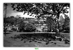 PENCESTER GARDENS in DOVER (régisa) Tags: arbre pencester garden dover douvres kent england angleterre pelouse shade ombre grass
