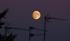 Aerial view of the Moonrise 22 Oct 2018 (Sculptor Lil) Tags: moonrise moon london canon700d waxinggibbous dusk