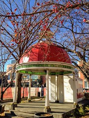 HSS (Mr. Happy Face - Peace :)) Tags: fall autumn art2018 outdoors tree red roof gazebo bandstand park streetscape cowtown cans2s calgary yyc canada berries