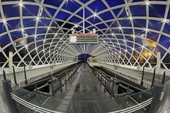 Indoorsternenhimmel (ploh1) Tags: rotterdam niederlande bahnhof lichter beleuchtet langzeitbelichtung architektur bahn fisheye nachtaufnahme weitwinkel himmel blauestunde