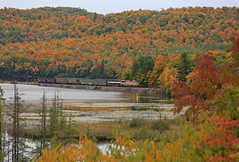 Orgasm of Color (GLC 392) Tags: emdx cn canadian national l549 1606 emx sd70acet4 demo demonstrator fall color palmer goose lake water orange green yellow tree maple pine trees railroad railway train ore sub mi michigan peak true peaceful peace red orgasm