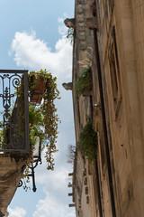Lecce - centro storico - 25 (MoJo0103) Tags: italia italy italien puglia apulien lecce leccecentrostorico