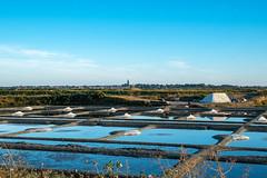 Recolte de sel (Y-LG) Tags: compositionettypedephoto continentsetpays europe fr fra france guerande lieux loireatlantique maraissalant motsclésgénériques paysdelaloire paysage