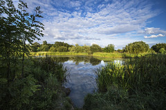 Country Park (CraDorPhoto) Tags: canon6d landscape water calm still reflection sky clouds blue green grasses trees nature outdoors uk cambridgeshire lake