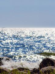 Heinät ja merituuli (MikeAncient) Tags: emäsalo emsalo porvoo suomi finland vaarlahti varlaxudden meri itämeri suomenlahti sea balticsea gulfoffinland finskaviken vesi water kivi rock stone sten kiviä rocks stones stenar maisema maisemakuva maisemakuvaus landscape landscapephotography luonto luontokuva luonnonvalokuvaus luontokuvaus nature naturephotography geotagged
