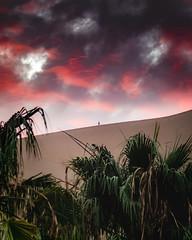 Oppressé (ThibaultPoriel) Tags: huacachina pérou peru sunset dramaticsky sky oneperson silhouette oasis desert southamerica travel voyage scene scenic scenery outdoors