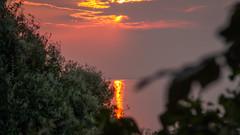 (z e d s p i c s™) Tags: balaton sunset hungary hongarije zedspics 169 fonyód magyarország