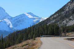 Mountain roads Alberta Canada (davebloggs007) Tags: mountain roads alberta canada rockies october 2018