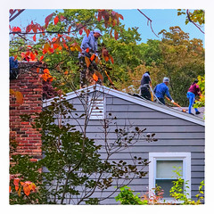 The Roofers (Timothy Valentine) Tags: 2018 fbpost 1018 large intheneighborhood datesyearss people hrsw eastbridgewater massachusetts unitedstates us
