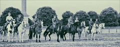 The Line-Up (meniscuslens) Tags: wwi ww1 reenactment horse horses soldier uniform trees