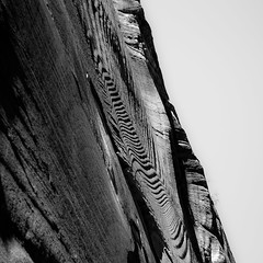 In Canyons 275 (noahbw) Tags: d5000 hiddencanyon nikon utah zionnationalpark abstract autumn blackwhite blackandwhite bw canyon cliffs desert erosion lines monochrome mountain natural noahbw rock shadow slotcanyon square stone