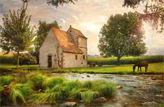 The frog (Jean-Michel Priaux) Tags: paysage landscape nature church abbey chapel river horse poetry priaux hdr sun sunshine paint painting art