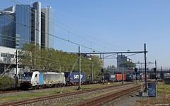 20181010 CT 186 109 + containers, Amsterdam Sloterdijk (Bert Hollander) Tags: amsterdamsloterdijk ass captrain bls loc 186109 eloc traxx locomotief br186 stickers alpen grijs railpool containertrein samskip cargo goederentrein rlx trein 40026knhrp