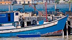 blue and blue (Bernal Saborio G. (berkuspic)) Tags: boat panama blue