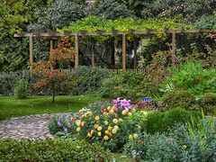 Botanic Garden in St. Petersburg (janepesle) Tags: saintpetersburg russia nature autumn fall travel city cityscape architecture flowers green grass outdoors
