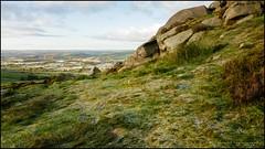 The distant Tittesworth reservoir (G. Postlethwaite esq.) Tags: staffordshire tittesworthreservoir drystonewall fields frost grass heather landscape outdoor photoborder plant rocks sunrise theroaches trees