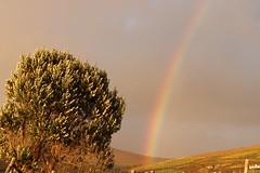 Dunquin Rainbow (Ros and Ali) Tags: ireland wildatlanticway