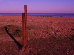 Rusty Post (The original SimonB) Tags: felixstowe suffolk september 2018 beach sea coast olympus e420 rust risty post