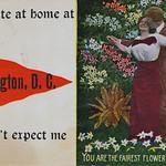 I'm quite at home at Washington, D.C. thumbnail