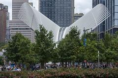 WTC Oculus (427) (Sanyam Bahga) Tags: d7000 55200 usa newyork newyorkcity nyc manhattan financialdistrict worldtradecenter worldtradecentertransportationhub santiagocalatrava calatrava oculus architecture wtc expressionism expressionist