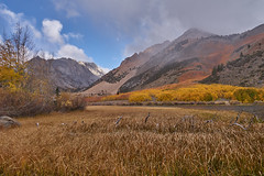 Fall Colors near Bishop Creek (AgarwalArun) Tags: sony a7m2 sonyilce7m2 landscape scenic nature views easternsierra bishopca bishopcreek lakes leaves autumn fallfoliage mountains inyonationalforest