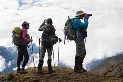 Trekkers who enjoy the panorama between Keche La pass and Lhedi - Gasa District - Snowman Trek - Bhutan (PascalBo) Tags: nikon d500 asie asia southasia asiedusud drukyul drukgyalkhap bhutan bhoutan འབྲུག་ཡུལ། འབྲུག་རྒྱལ་ཁབ་ snowman trek trekking hike hiking lunana gasa himalaya himalayas jigmedorjinationalpark mountain montagne trekker people outdoor outdoors pascalboegli