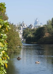 St James reflections (dwimagesolutions) Tags: england london stjamespark reflections autumn indiansummer nikond200 nikkor85mmf18g