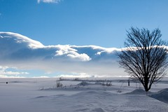 Aube IMG_1278 (Paul_Paradis) Tags: clouds nuage paysage light snow neige tree arbre white blanc winter hiver canada landscape nature quebec lumiere iledorleans