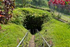Eingang Hana Lava tube Maui Hawaii Road to Hana