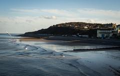 I do like to be beside the seaside (wibblefish) Tags: cromer norfolk seaside waves sea beach bird landscape